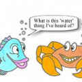 Fish asking a crab