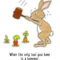 Stressed Rabbit