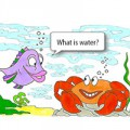 fish-crab-cartoon-300-200